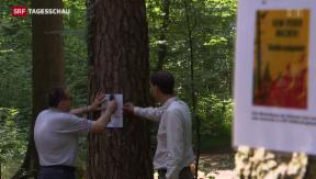 Video «Brandgefahr in Schweizer Wäldern» abspielen