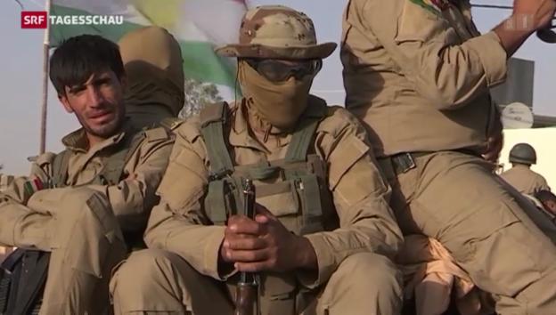 Video «Gemeinsame Front gegen IS» abspielen