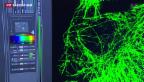 Video «Nobelpreis in Chemie für Erforschung kleinster Zell-Teile» abspielen