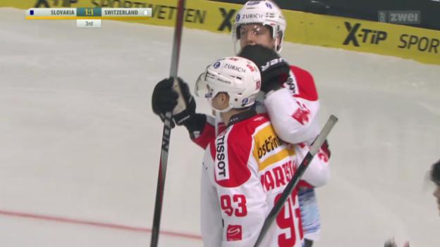 Video «Eishockey: Slowakei - Schweiz» abspielen