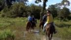 Video «Reitausflug in Brasilien» abspielen