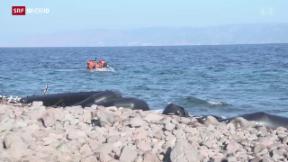 Video «FOKUS: Chaos auf Lesbos» abspielen