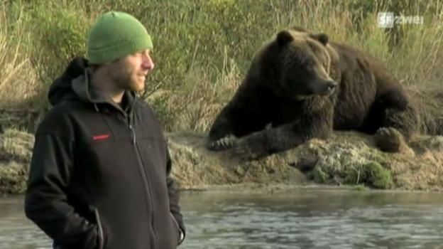 Video «Die Grizzlies im Fokus (3)» abspielen