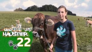 Video «Marina mit ihrer Kuh Albula» abspielen
