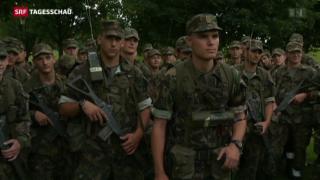 Video «Armeereform im Gegenwind » abspielen