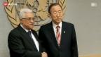 Video «Palästina bald Beobachter-Staat?» abspielen