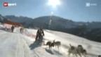 Video «Schlittenhunderennen: Der letzte Auftritt von Leithund Diamant am Alpentrail» abspielen