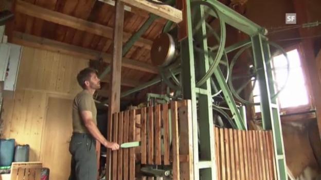 Video «Landwirt Thomas Eberli zur Wichtigkeit seiner Mini-Seilbahn.» abspielen
