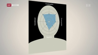 Video «Burkhalter-Nachfolge – das sind die Anforderungen» abspielen