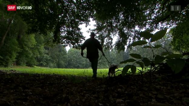 Video «Hunde schiessen erlaubt» abspielen