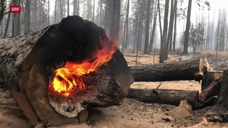 Einsatzkräfte der Feuerwehr löschen Brände in Klamath County