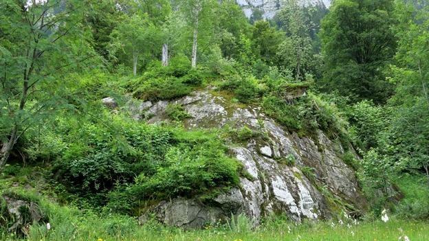«S'Rütli vom bernischen Naturschutz» (15.07.2013)