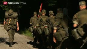 Video «SP fordert Armeereform» abspielen