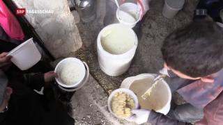Video «Lebensmittel für Syrien – ein Schweizer leitet die Mission» abspielen