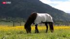 Video «Schock für Landbesitzer» abspielen