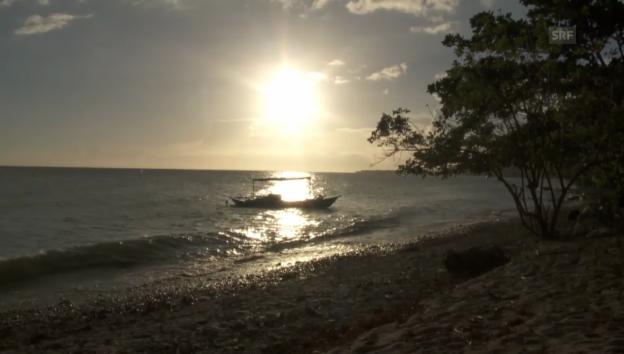 Video «Meeresrauschen und Tierstimmen» abspielen