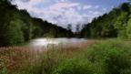 Video «Die Ermitage in Arlesheim» abspielen