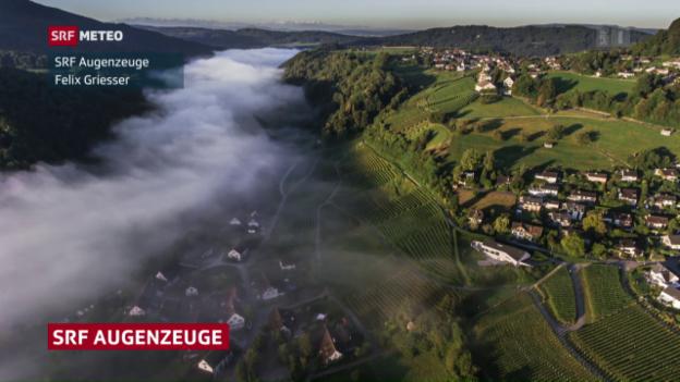 Video «Seerauch und Nebel» abspielen