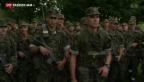 Video «Ständeratskommission hält an Armeereform fest» abspielen