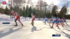 Video «Langlauf: Verfolgung in Falun» abspielen