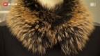 Video «Mehr Pelz-Importe in die Schweiz» abspielen