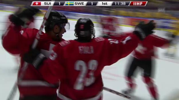 Video «Eishockey: Fialas Tor an der U20-WM 2013/14» abspielen