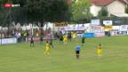 Video «Fussball: Weitere Cup-Highlights» abspielen