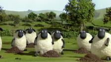 Link öffnet eine Lightbox. Video Shaun das Schaf (12): Die Maulwurfshügel vom 22.02.2017 abspielen
