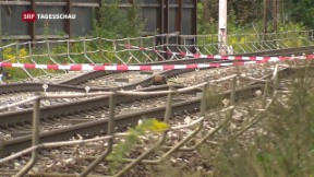 Video «Zugverkehr nach Deutschland schwer beeinträchtigt» abspielen