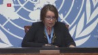Video «Neue Syrien-Ermittlerin» abspielen