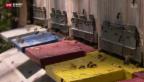 Video «Grosse Nachfrage bei Imkerkursen» abspielen