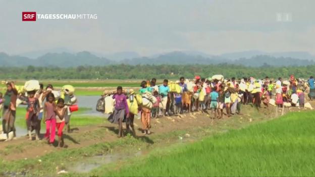 Video «UNO-Sicherheitsrat fordert Ende der Gewalt in Burma» abspielen
