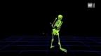 Video ««Einstein» bei den Hornussern» abspielen
