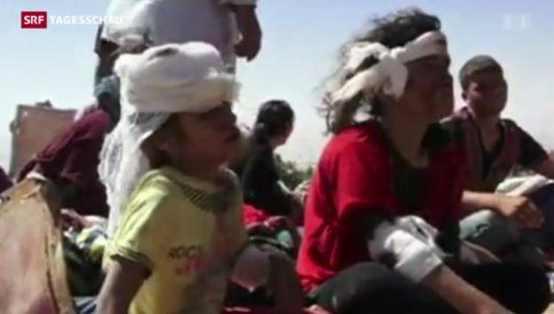 Video «Hilfe für Jesiden im Irak» abspielen