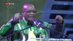 Video «Präsident Zuma und sein Zulu-Land» abspielen