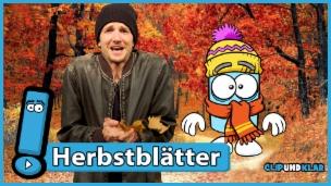 Video «Warum verlieren die Bäume im Herbst ihre Blätter?» abspielen