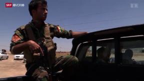 Video «Unterwegs mit Peschmerga-Kämpfern» abspielen