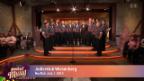 Video «Jodlerklub Wiesenberg» abspielen