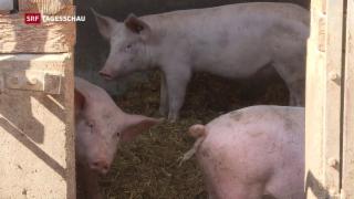Video ««Nein» zu Agrarinitiativen» abspielen