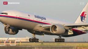 Video «Malaysische Passagiermaschine über der Ukraine abgestürzt» abspielen