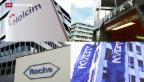 Video «Schweizer Firmen im «Kaufrausch»» abspielen