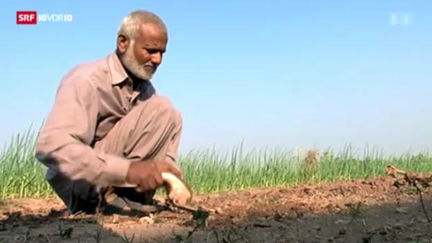Video «Armut im Atomstaat Pakistan» abspielen