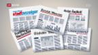 Video «Kleine Zeitungen sind die Gewinner» abspielen