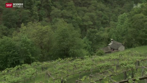 Video «Schweiz aktuell vom 29.05.2014» abspielen