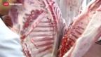 Video «Schädliches Medikament in Pferdefleisch nachgewiesen» abspielen