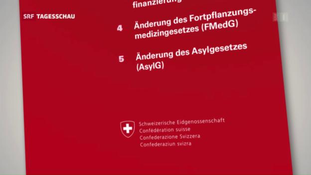 Video «Pro-Komitee für die Asylgesetz-Revision» abspielen