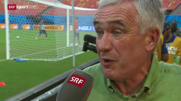 Video «Fussball: WM, Interview mit Hanspeter Latour» abspielen