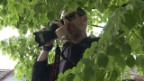Video «Fotosafari mit Arthur Honegger» abspielen