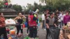 Video «Mindestens 220 Tote bei Erdbeben in Mexiko» abspielen