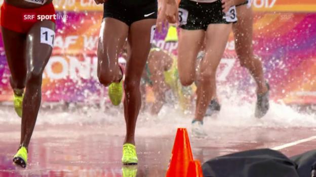 Video «Sturz im Steeple-Rennen: Fente geht so richtig baden» abspielen